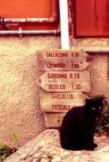 Montevecchia2
