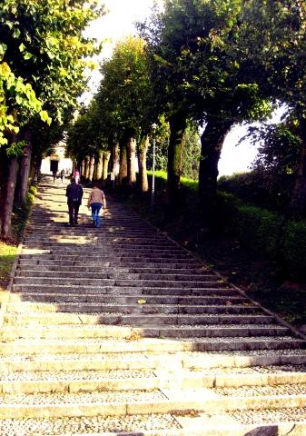 Montevecchia5