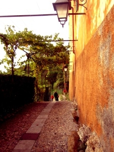 Montevecchia7