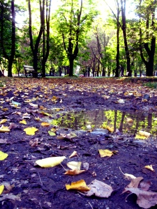 Parco di Monza1