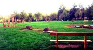 Parco di Monza3
