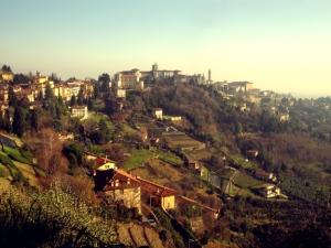 Bergamo7