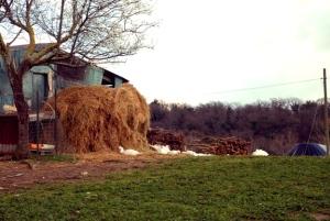 Abbadia di Fiastra Farm