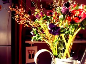 Field Flowers 1