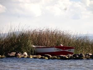 LlanchonBoat