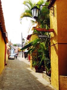 OaxacaStreet7