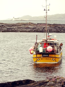LuingYellowBoat